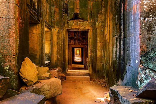 Ta prohm, angkor wat in kambodscha.