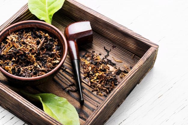 Tabakpfeife rauchen