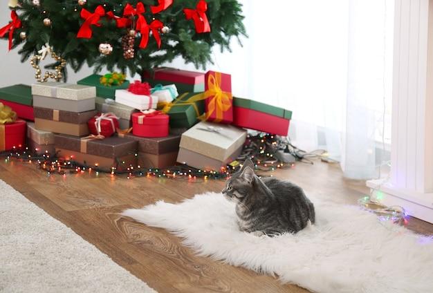 Tabby-katze, die auf teppich nahe schönem weihnachtsbaum liegt christmas
