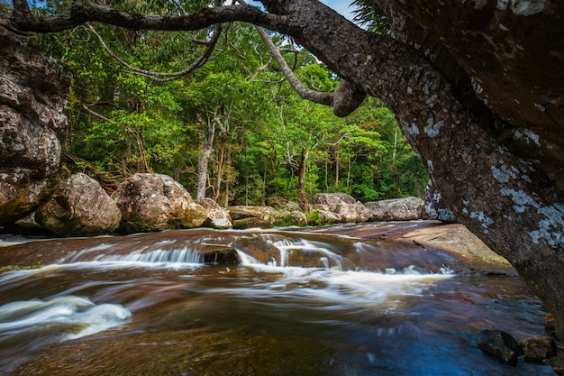 Tad-loei-nga-wasserfall. schöner wasserfall in der loei provinz, thailand.