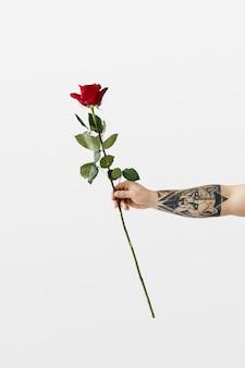 Tätowierte hand mit rose Premium Fotos