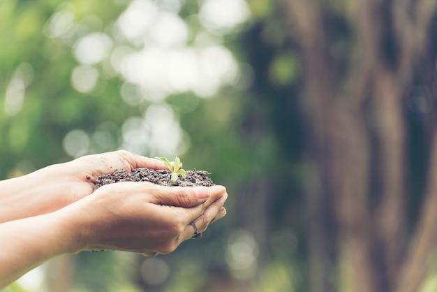 Tag der erde konzept. schließen sie herauf hand der jungen frau, die kleine pflanze hält, die auf boden mit grünem hintergrund wächst