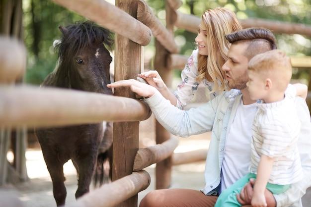 Tag mit der familie im zoo verbringen