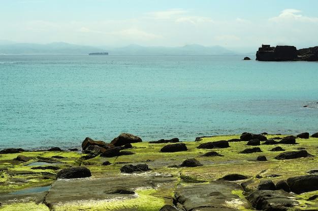 Tagesaufnahme eines strandes bedeckt mit felsen und moos in tarifa, spanien