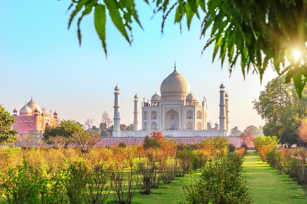 Taj mahal und der garten an einem sonnigen tag, agra, indien.