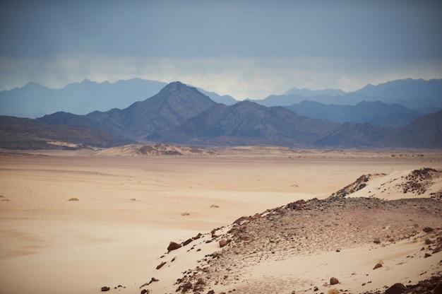 Tal in der sinai-wüste mit sanddünen und bergen