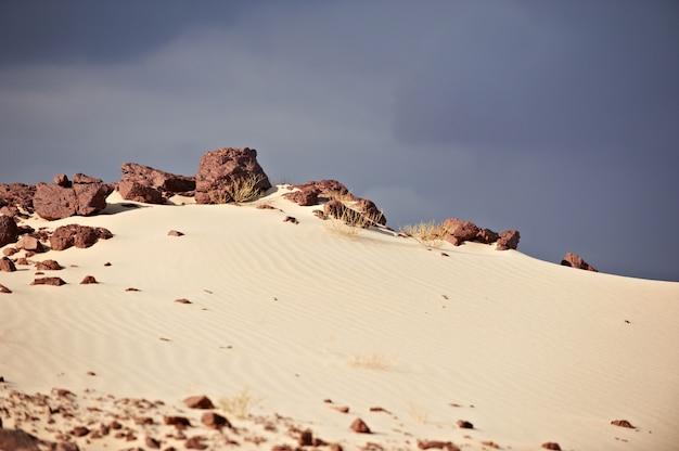 Tal in der sinai-wüste mit sanddünen