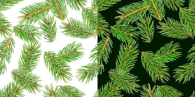 Tannenbaumaste, kiefernniederlassung, weihnachtsnadelbaum lokalisiert auf weiß und grün