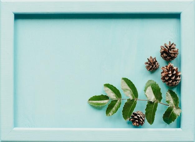 Tannenzapfen und blätter von mahonia auf einem blauen holz