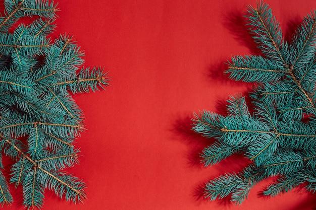 Tannenzweige grenzen auf rotem hintergrund, gut für weihnachtshintergrund. ansicht von oben. flach liegen. platz kopieren. stillleben. weihnachten und silvester