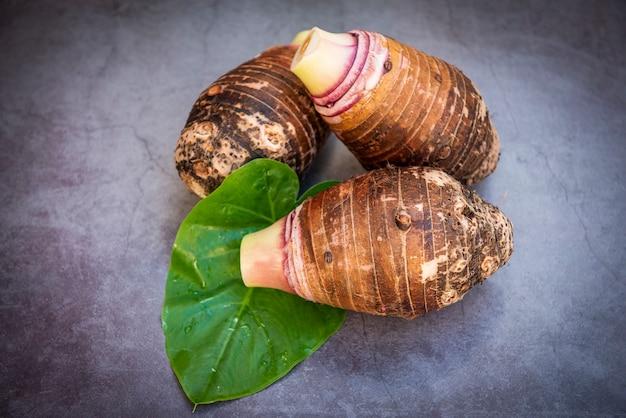Taro-wurzel auf taro-blatt und dunklem hintergrund, frische rohe bio-taro-wurzel kochfertig