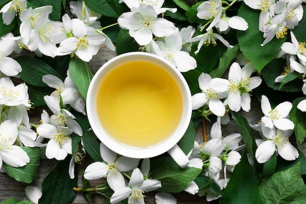 Tasse grüner jasmintee auf jasminblumenhintergrund