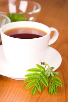 Tasse schwarzen tee mit kräutern