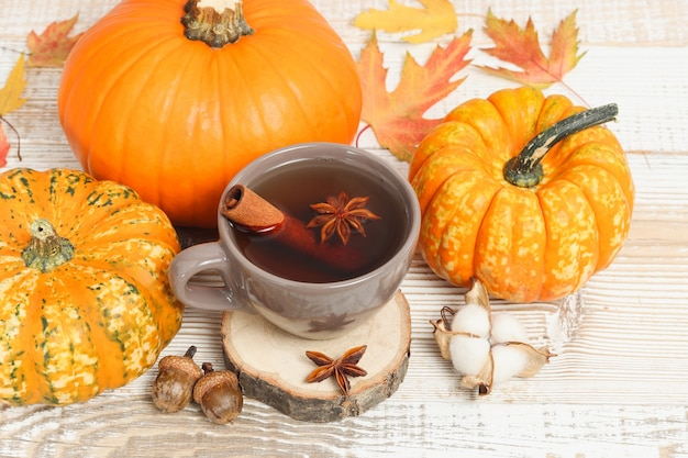 Tasse tee mit gewürzen auf holzständer unter kürbissen