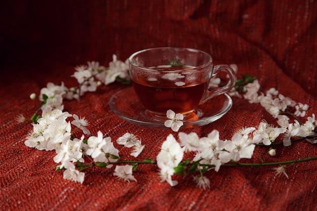 Tasse tee und kirschbrunch auf dem tisch. frühlingsnaturhintergrund mit reizender blüte. tee und blumen der kirsche auf rotem gemütlichem hintergrund. ansicht von oben, banner. frühlingskonzept