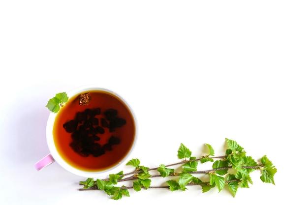 Tasse tee von birken-chaga-pilz und zerquetschten chaga-pilzstücken für teebrauen lokalisiert auf einem weißen hintergrund. platz für text