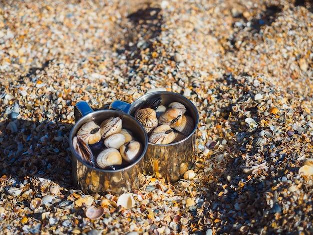 Tassen mit muscheln an der küste in der muschelbucht des asowschen meeres