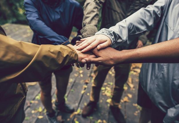Teambuilding im freien im wald