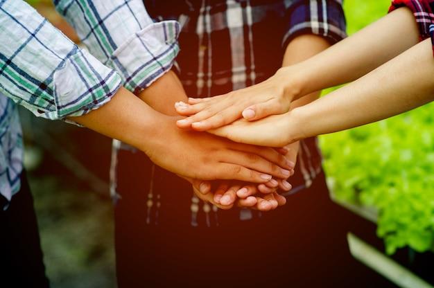 Teamwork, einheit, teamwork einheit gruppe einheit der geisteskraft bringen sie sich zusammen, um entschlossenheit und energie zu zeigen. teamarbeitskonzept