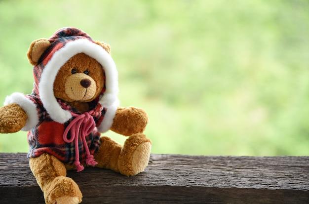 Teddy bear on der alte hölzerne tabellengrün-naturhintergrund