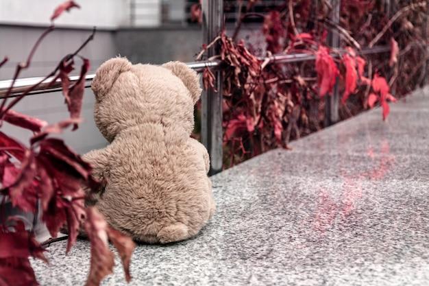 Teddybär am rand des geländers und blickte auf die ladentür hinunter