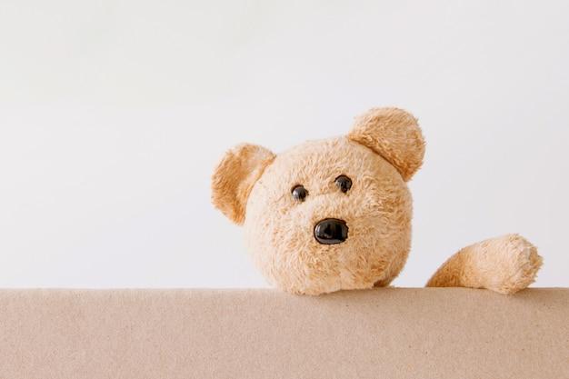 Teddybär, der an bord mit weißem hintergrund hält