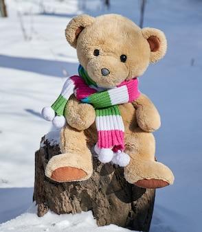 Teddybär in einem schal sitzt auf einem stumpf