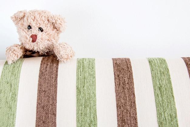Teddybär mit grünem und weißem hintergrund.