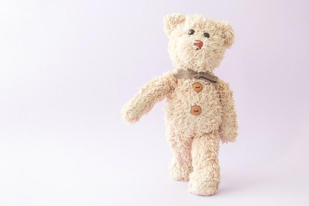 Teddybär trainiert in der turnhalle