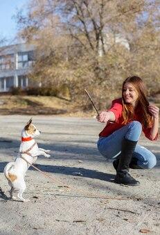 Teenager-mädchen haben training mit toy terrier hündchen mit holzstab