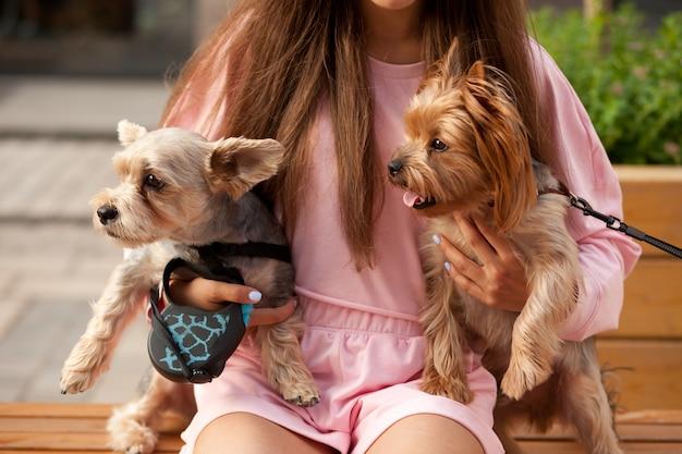 Teenager-mädchen umarmt kleine hunde in einem park im freien auf der bank sitzend