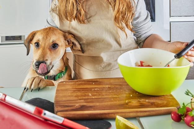 Teenager mit einem hund bereitet eine virtuelle online-meisterklasse vor und zeigt ein digitales rezept auf einem touchscreen-tablet an, während er zu hause in der küche eine gesunde mahlzeit zubereitet.
