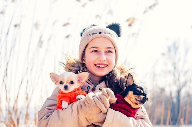 Teenager umarmt ihre zwei welpen chihuahua hunde und erwachsenen hund. chihuahua welpe