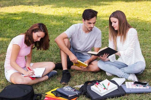 Teens, die im park zusammen studieren