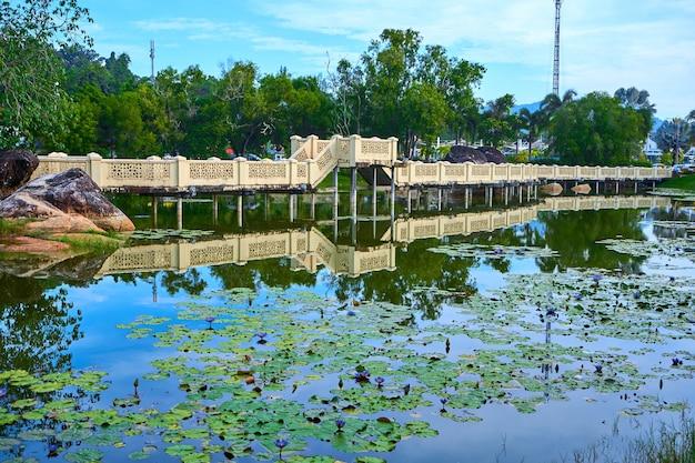 Teich im grünen park auf der tropischen insel. schöne naturlandschaft, ort zum entspannen.