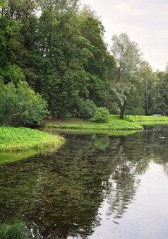 Teich im sommerpark. malerische grüne ufer bedeckt mit gras und bäumen