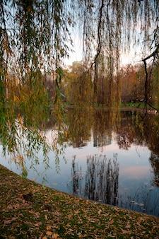 Teich in Boston, Massachusetts, USA