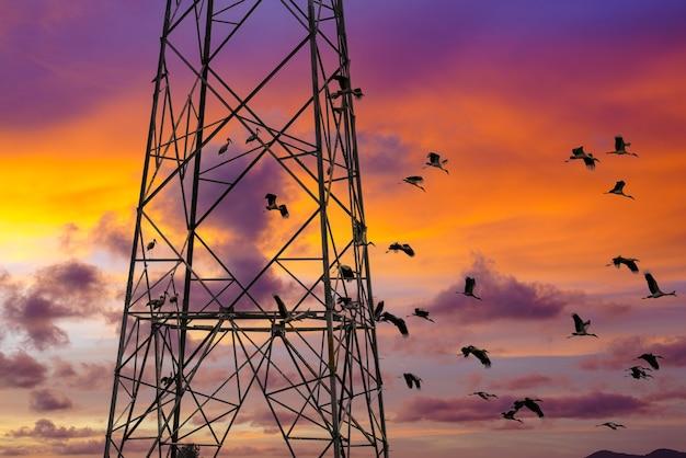 Telekommunikationsturm am sonnenuntergangshimmel
