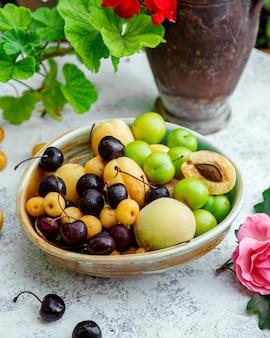 Teller mit kirschen, aprikosen und kirschpflaumen