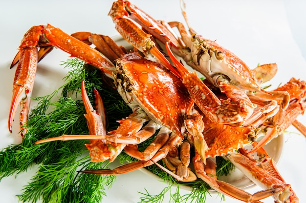 Teller mit rot gekochten krabben