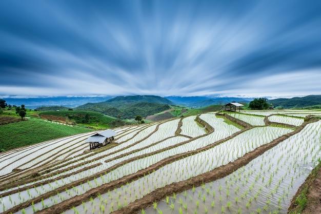 Terassenförmig angelegtes reisfeld in mae-marmeladen-dorf, chaingmai-provinz, thailand mit radialunschärfeeffekt.