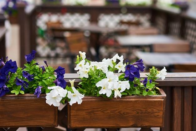 Terrassencafé verziert mit weiße blumen, abschluss oben