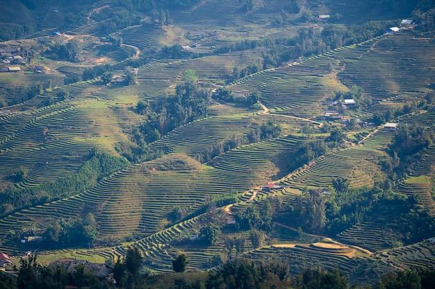 Terrassenförmig angelegte reisfelder, die typische landschaft in der nähe des bergdorfes sapa