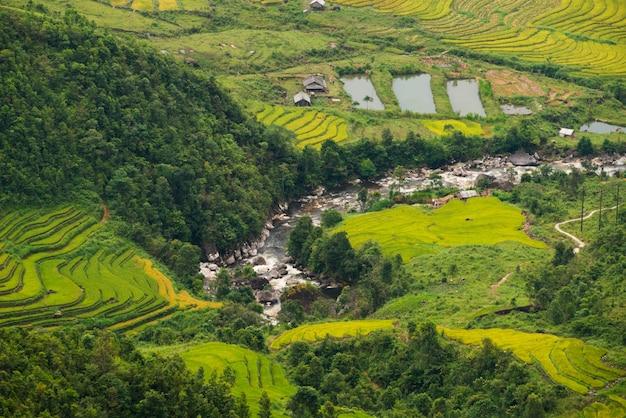 Terrassenförmig angelegtes reisfeld in mu cang chai, vietnam