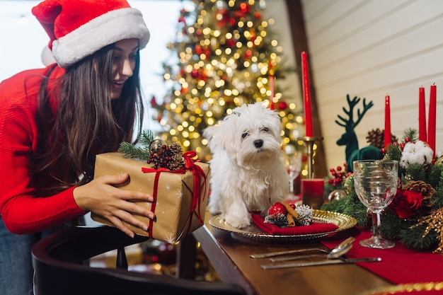 Terrier auf einem dekorativen weihnachtstisch, ein mädchen steht an der seite und hält ein geschenk