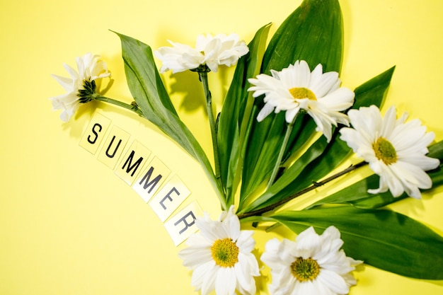 Text sommer aus buchstaben und feldkamillenblüten auf gelbem hintergrund. grußkarte flach kopieren raum konzept hallo sommer, sommerzeit.