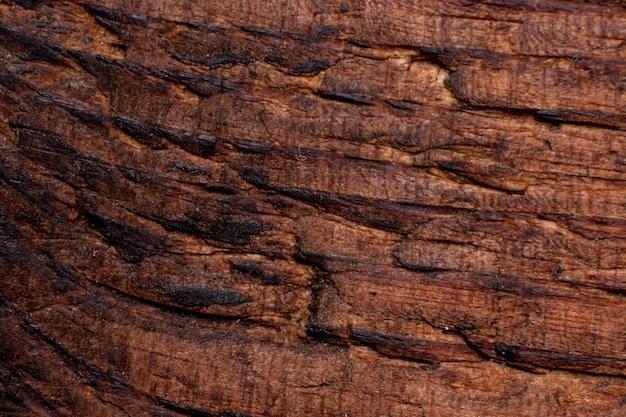 Textur der alten holznahaufnahme. kann als hintergrund verwendet werden.