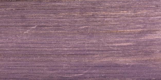 Textur der seitenansicht der alten buchseiten