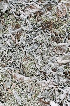 Textur des gartenbodens im frühwinter oder spätherbst. frostiges gras, stöcke und blätterhintergrund