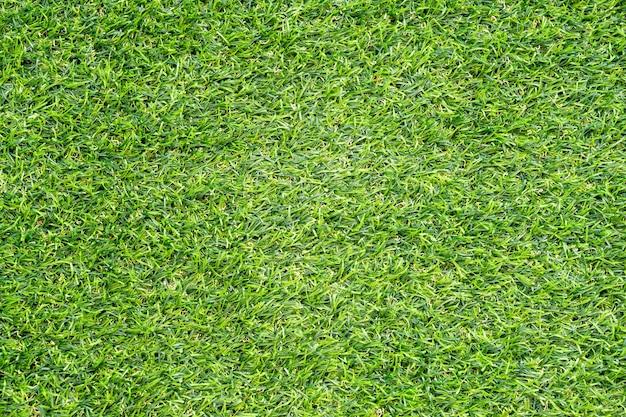 Textur des grünen grases für den hintergrund. grünes rasenmuster und beschaffenheitshintergrund. nahaufnahme.
